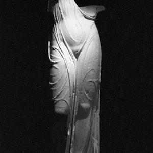 Venere ©Giovanni Piesco